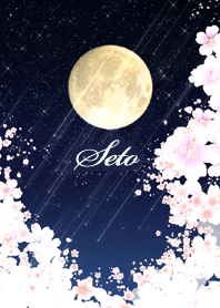 せと用★月夜桜