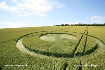 Devil's Den, nr. Clatford, Wiltshire. - 9th July 2015. Wheat. Central circle with concentric rings.