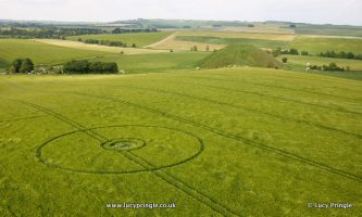 Silbury Hill, Nr Avebury, Wiltshire. 28 May 2016. Barley. c. 80 feet. A simple double ringed circle with a flattened centre.
