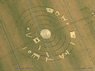 Burderop Down, Nr Barbury Castle, Wiltshire. 20th July 2016. c. 100 feet (m 30.5) diameter. Wheat. A flattened central circle surrounded by five concentric rings. An outer ring of hieroglyphs.