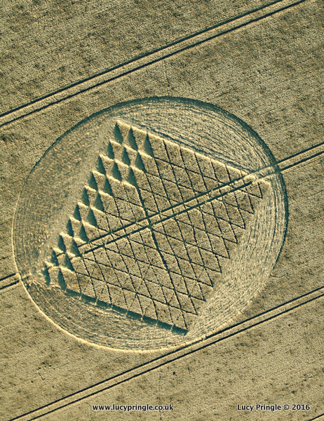 Chilcomb Range, Nr Winchester, Hampshire. 3 August 2016. Wheat. c.110 feet (33.5m). Incomplete grid pattern with some squares divided on their diagonal, contained within a circle.