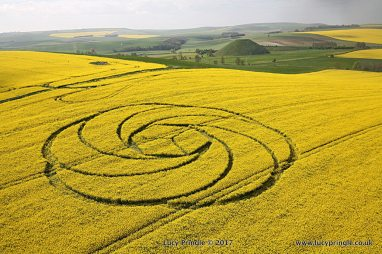 Waden Hill, Nr Avebury, Wiltshire. 22 April 2017. Oil seed rape (canola). c.125 feet (38m) diameter. A spiral six petal floral design containing a central cube.