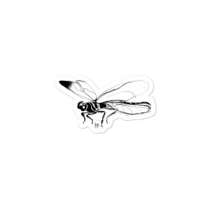 Dragonfly sticker. Uzlīme Melnā spāre.