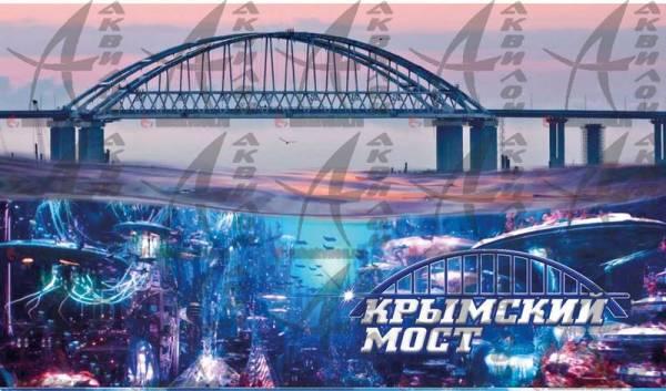 Мост с медузами 6*10