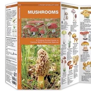 Mushrooms Folding Pocket Guide-0