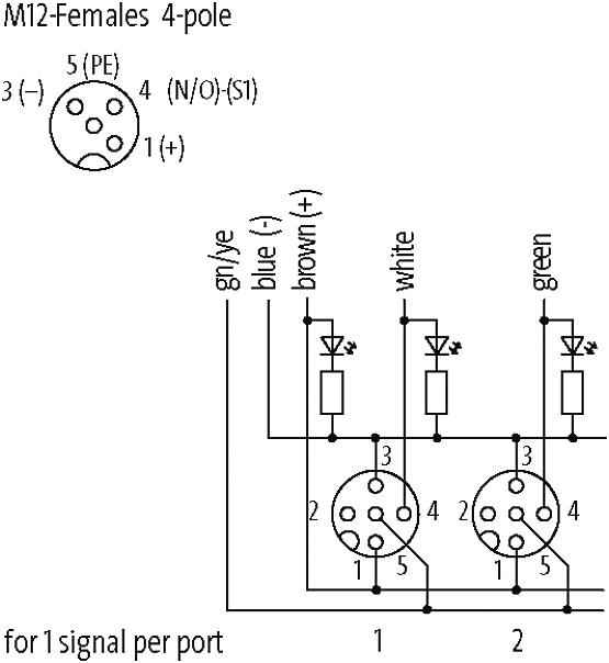 EXACT12, 4XM12, 4 POLE MOULDED CABLE at Murrelektronik