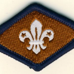 106156 Beaver Chief Scout's Bronze Award Badge