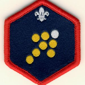 106179 Scout Team Leader Challenge Award Badge
