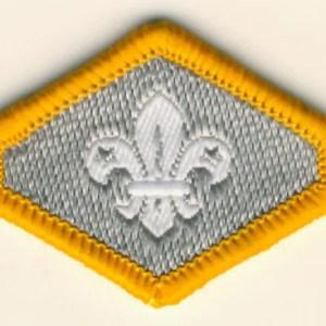 106195-Cub-Chief-Scouts-Silver-Award-Badge-1