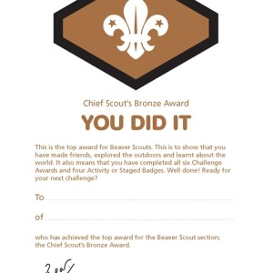 106329 Chief Scout's Bronze Award Certificates (Pack of 10)