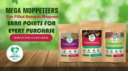 Little Moppet Foods Reward Program
