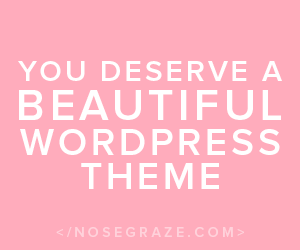 You deserve a beautiful WordPress theme