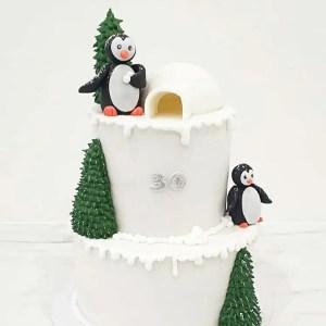 C.D Le pôle Nord - Pingouin