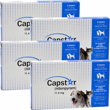 CAPSTAR Blue for Dogs