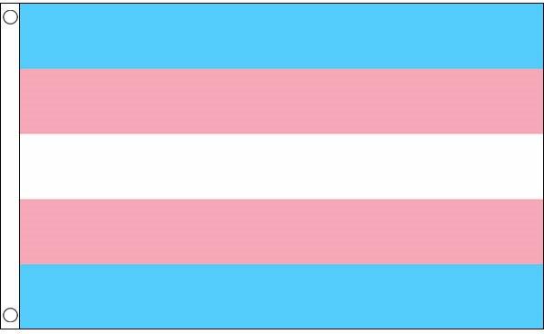 Transgender Pride flag 60 x 90 print  QX Shop