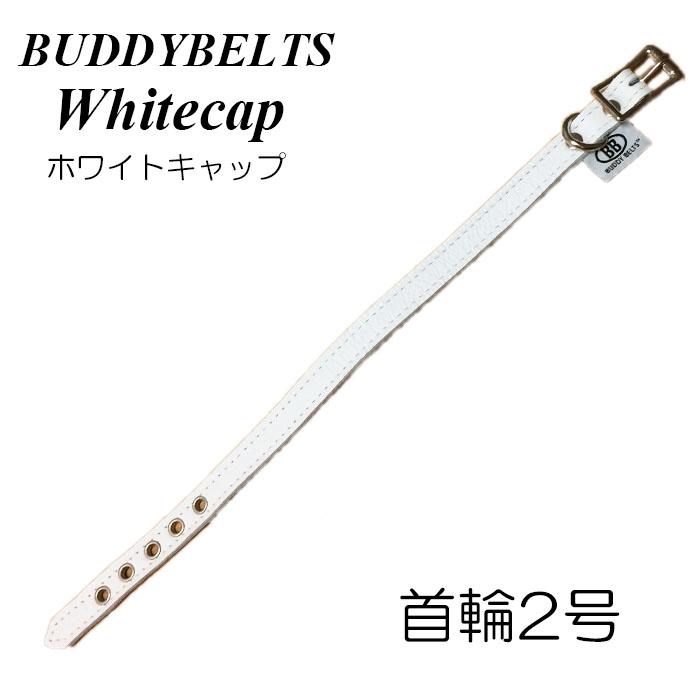 DogSkip: Oar leather collar 2 white cap BB BUDDYBELT Buddy