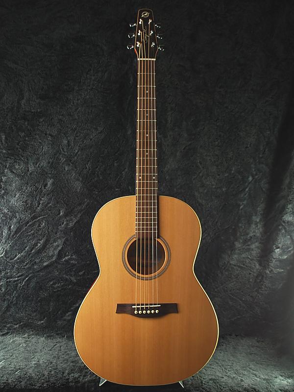 Guitar Planet Seagull Coastline S6 Folk Cedar brand new