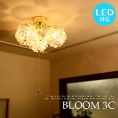 Bright Living Room Ceiling Lights Grey Armchair Markdoyle Bloom 3 C Led Light Bulbs For Pulls Itch