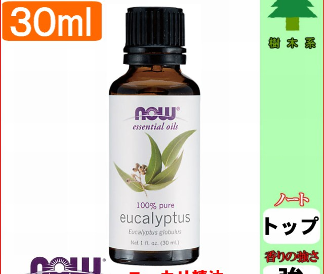 Eucalyptus Essential Oil  Ml Eucalyptus Oil Yukari Now Essential Oil Aroma Hay Measures Toy Insect Repellent Insect Repellent Room Dried Smell