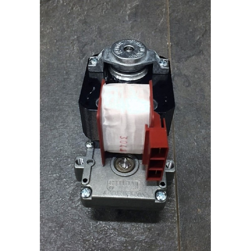 MOTORIDUTTORE KENTA 2 RPM ALBERO 85  Ricambi per stufe