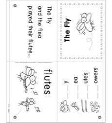 Phonics Story: The Fly (Initial consonant blend fl