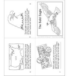 The Bald Eagle Mini-Book by