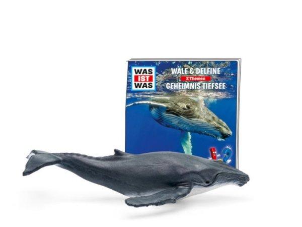 WAS IST WAS - Wale & Delfine/Geheimnis Tiefsee   Tonies-Boxine Sales DAB