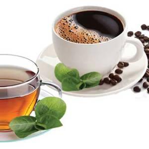 Kave, čajevi, namazi...