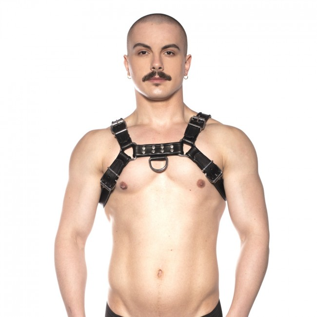 Prowler RED Bull Harness Black