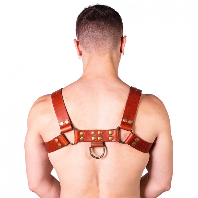 Prowler RED Butch Harness Brown/Brass