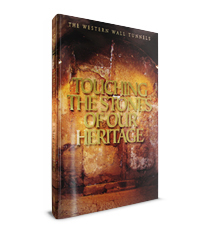 Touching the Stones of Our Heritage / Dan Bahat