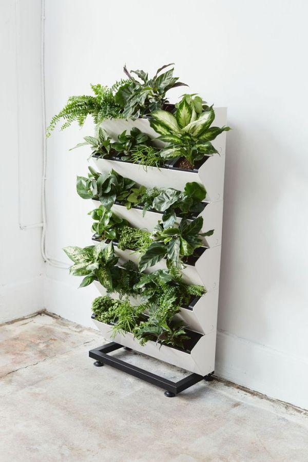 White Vertical Garden The Plant Lounge