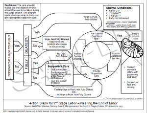 New Handout on Action Steps in Second Stage Labor