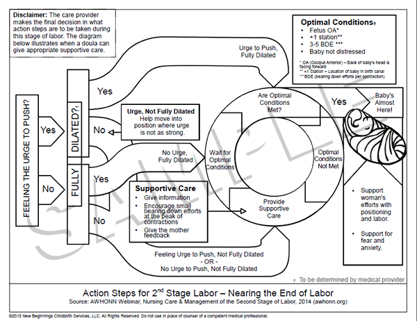 Actions Steps for 2nd Stage Labor