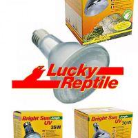 "Ampoule HID ""Bright Sun UV Jungle ou desert"" LUCKY REPTILE® 35/50/70W (Nécessite un ballast)"