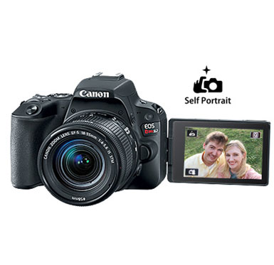 sl2 features fam - Canon Cameras US 24.2 EOS Rebel SL2 Body
