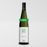 347 M.S.L.M. Bianco 2020