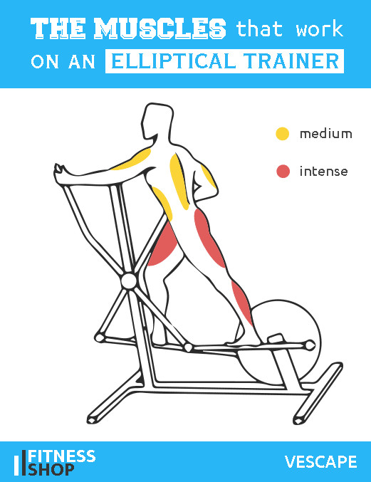 Exercise Bike Diagram
