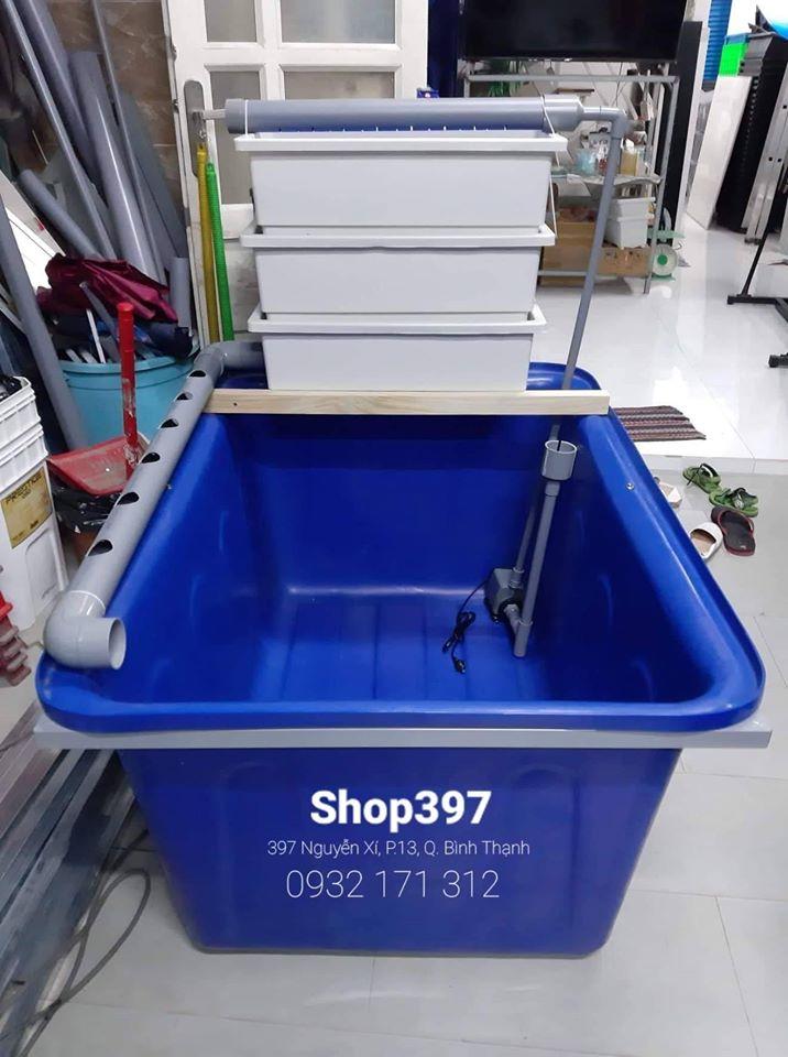 Hồ cá kèm hệ thống aquaponics PVC đơn giản của Shop397