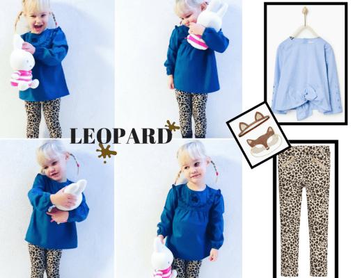 leopard budget