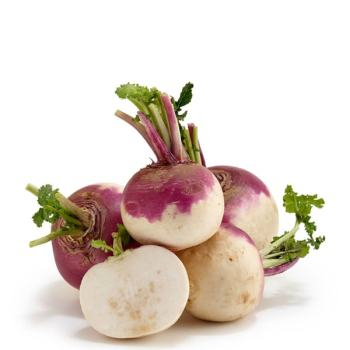 Fresh Vegetables Shalgam – Turnip