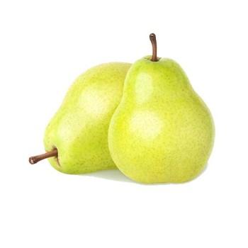 Fruits Nashpati – Pear Fruit
