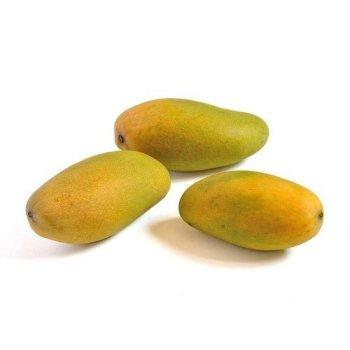 Fruits Dasheri Aam – Mango