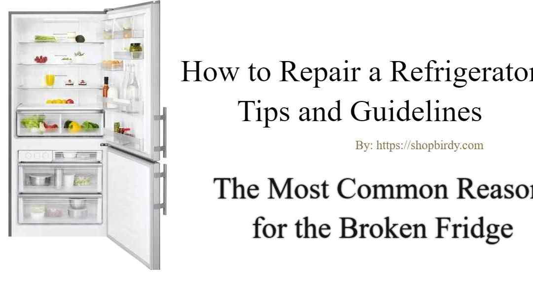Fix Broken Fridge | The Most Common Reason for the Broken refrigerator