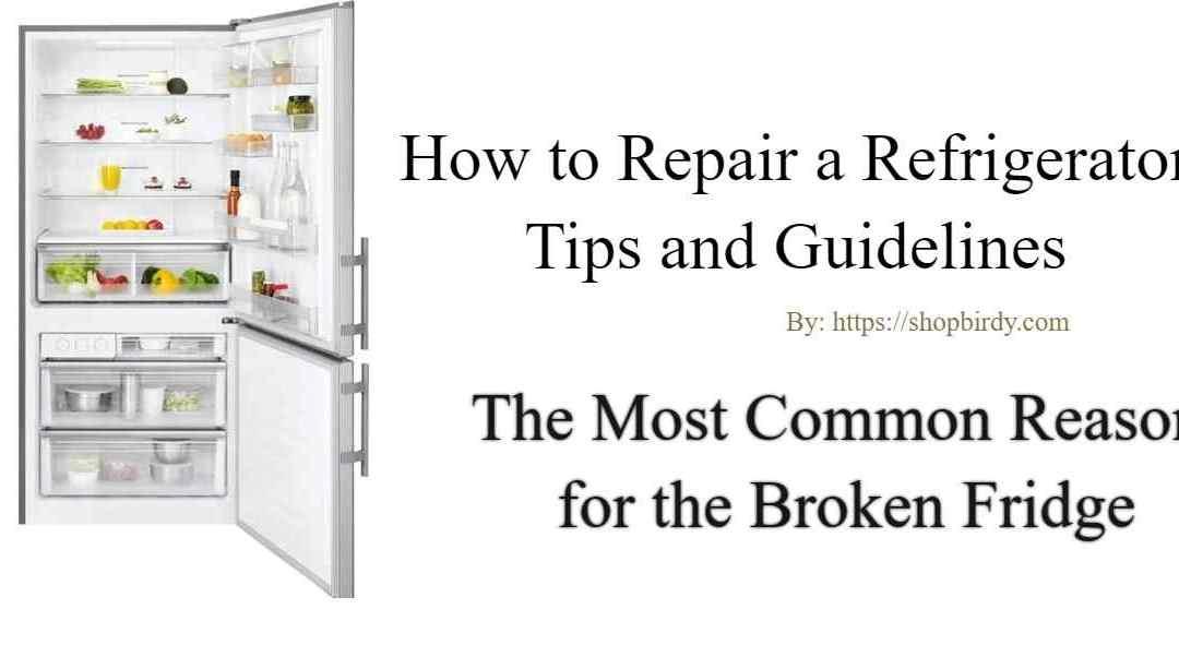 Fix Broken Fridge   The Most Common Reason for the Broken refrigerator