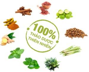 Thành phần trà thảo mộc giảm cân tan mỡ bụng Thủy Liên Hoa