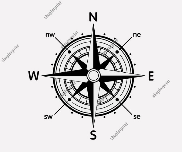 Wind Rose Compass Set Vector