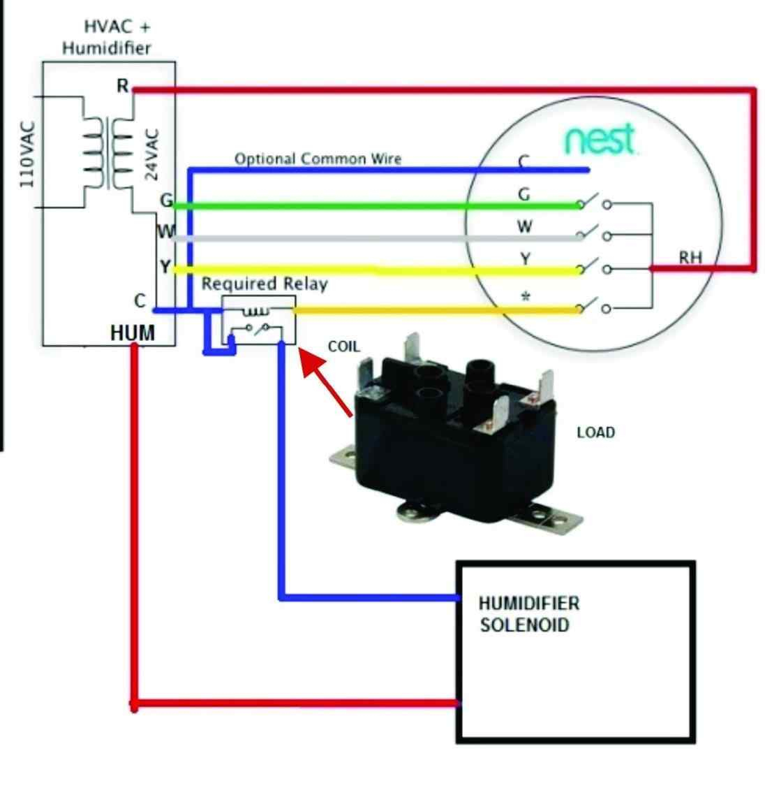 attic fan thermostat wiring diagram plant cell without labels  ideas