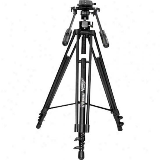 Nikon 2189 AF-S Teleconverter TC-20E III Lens @ Cameras