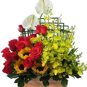 hoa sinh nhật hsn 79